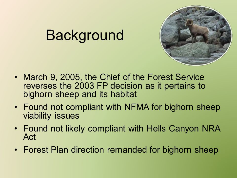 Background March 9, 2005, the Chief of the Forest Service reverses the 2003 FP decision as it pertains to bighorn sheep and its habitat Found not comp
