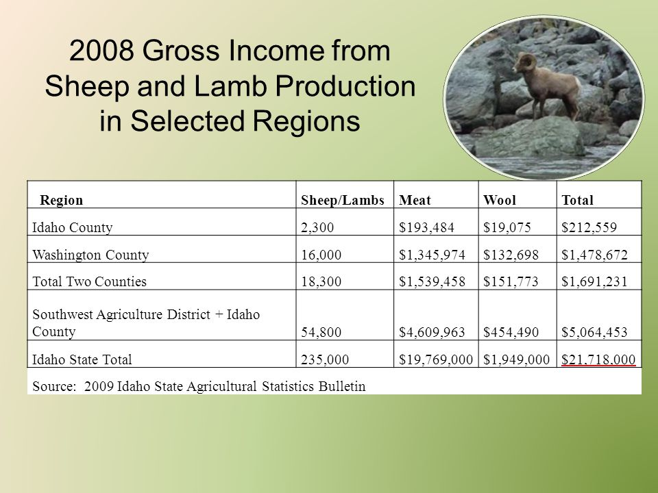 2008 Gross Income from Sheep and Lamb Production in Selected Regions RegionSheep/LambsMeatWoolTotal Idaho County2,300$193,484$19,075$212,559 Washingto