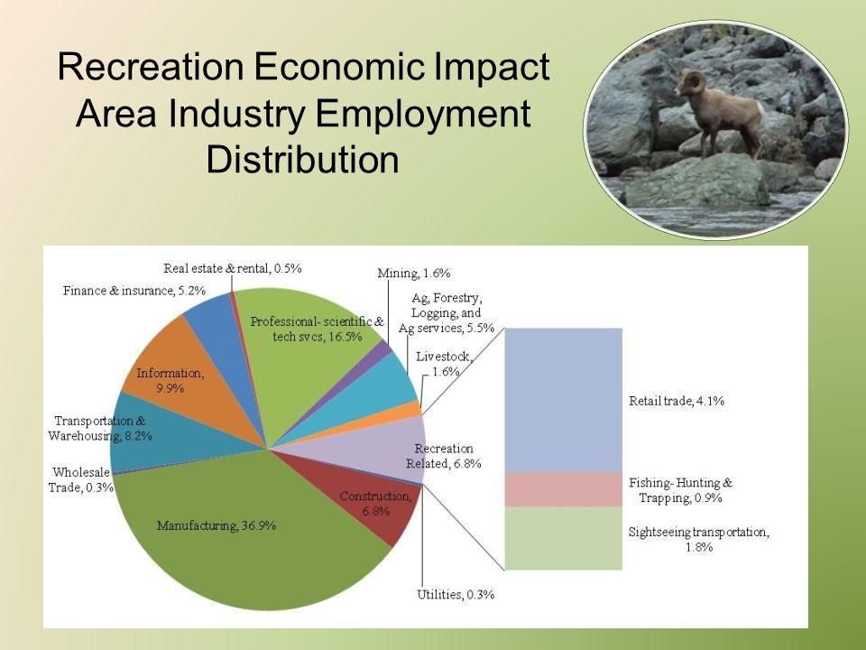 Recreation Economic Impact Area Industry Employment Distribution