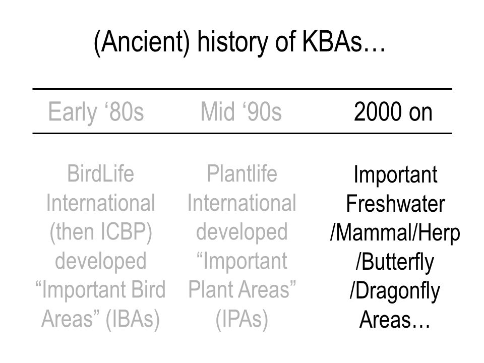 (Ancient) history of KBAs… Early '80s BirdLife International (then ICBP) developed Important Bird Areas (IBAs) Mid '90s Plantlife International developed Important Plant Areas (IPAs) 2000 on Important Freshwater /Mammal/Herp /Butterfly /Dragonfly Areas…
