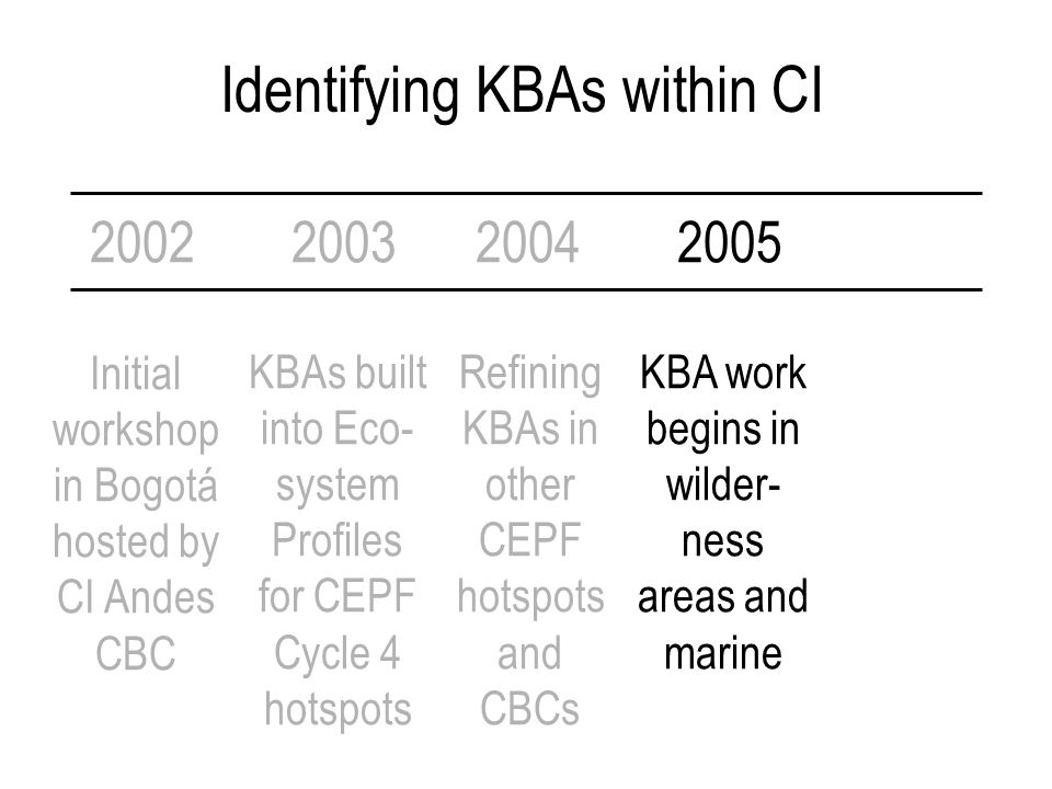 Identifying KBAs within CI 2002 Initial workshop in Bogotá hosted by CI Andes CBC 200320042005 KBAs built into Eco- system Profiles for CEPF Cycle 4 hotspots Refining KBAs in other CEPF hotspots and CBCs KBA work begins in wilder- ness areas and marine