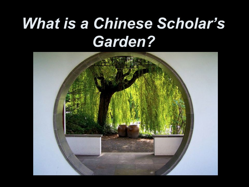 What is a Chinese Scholar's Garden