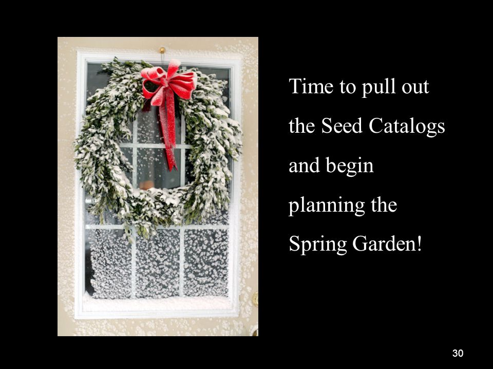 30 Time to pull out the Seed Catalogs and begin planning the Spring Garden!