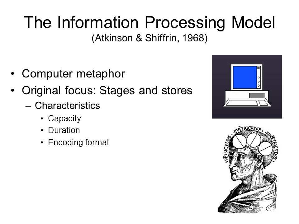 The Information Processing Model (Atkinson & Shiffrin, 1968) Computer metaphor Original focus: Stages and stores –Characteristics Capacity Duration Encoding format