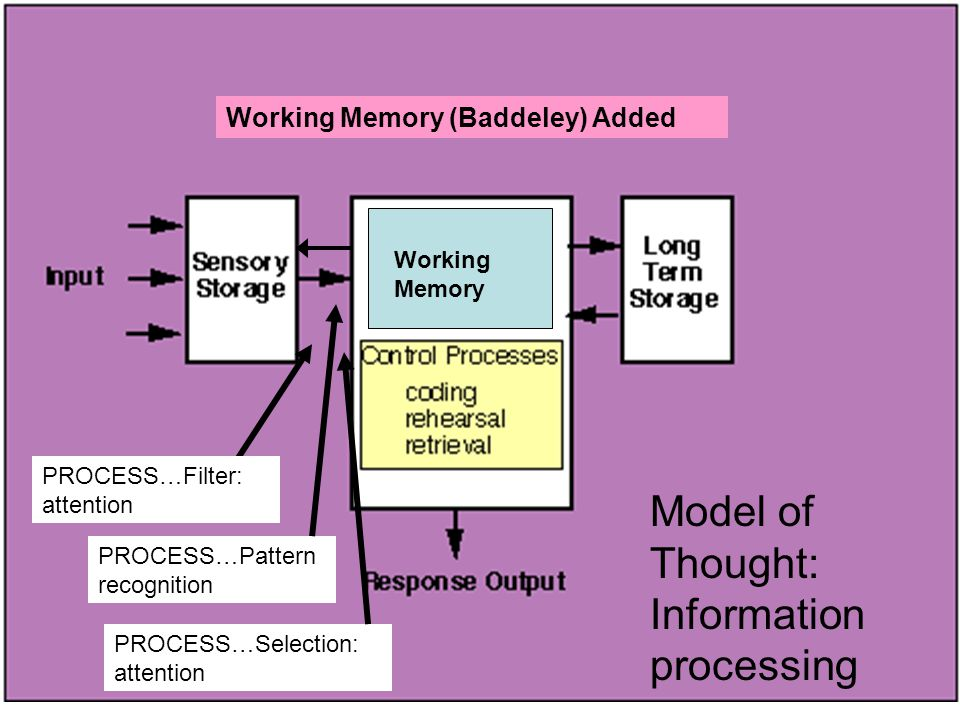 Model of Thought: Information processing PROCESS…Filter: attention PROCESS…Pattern recognition PROCESS…Selection: attention Working Memory Working Memory (Baddeley) Added