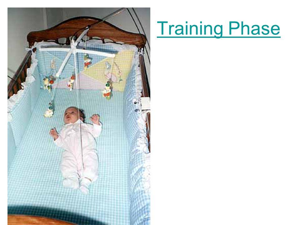 Training Phase