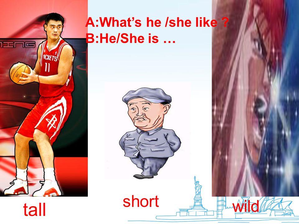 tall short wild A:What's he /she like ? B:He/She is …