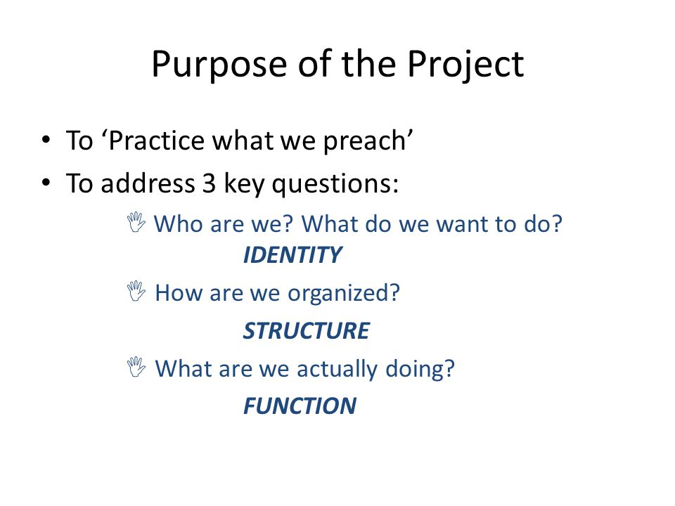 Purpose of the Project To 'Practice what we preach' To address 3 key questions:  Who are we? What do we want to do? IDENTITY  How are we organized?