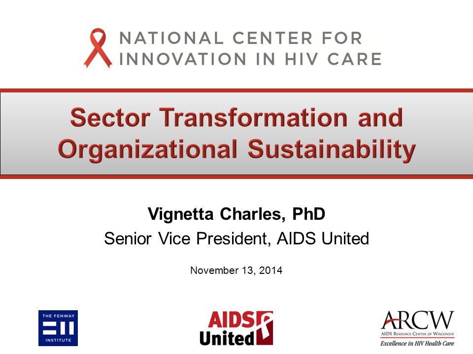 Vignetta Charles, PhD Senior Vice President, AIDS United November 13, 2014