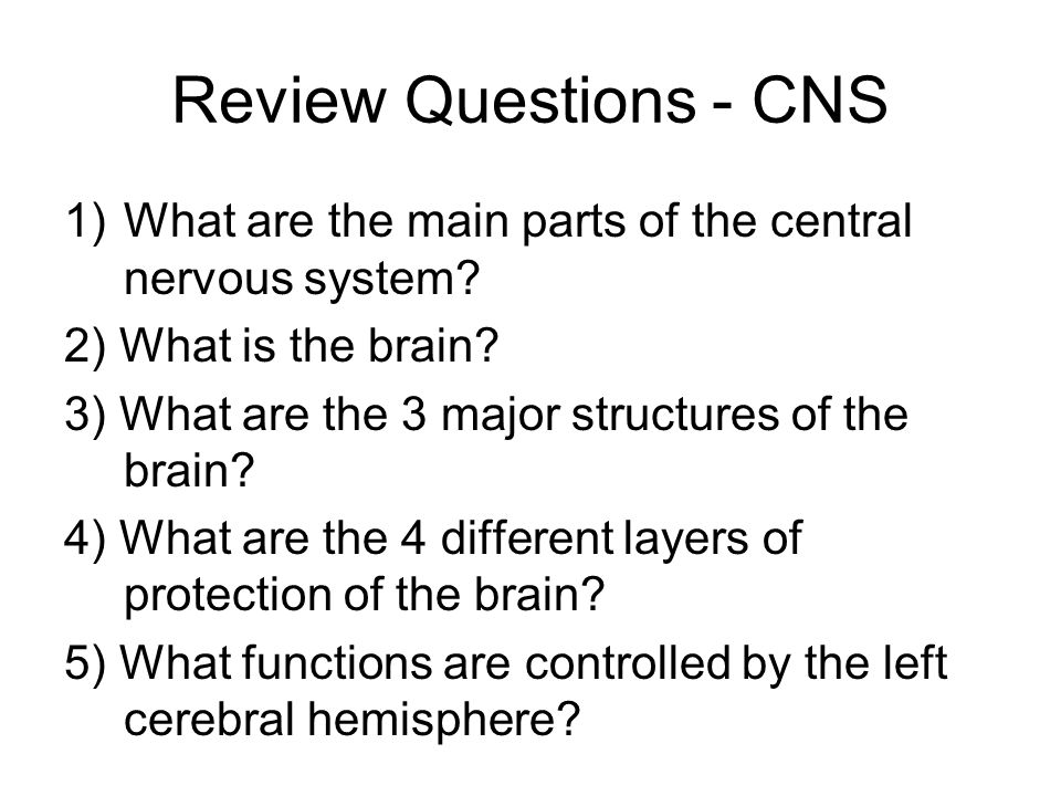 22 Review Questions - CNS 1)What are the main parts of the central nervous system.