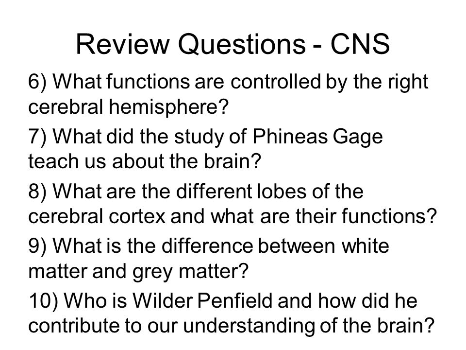 23 Review Questions - CNS 6) What functions are controlled by the right cerebral hemisphere.