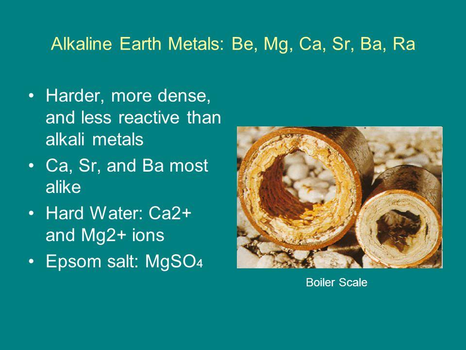 Alkaline Earth Metals: Be, Mg, Ca, Sr, Ba, Ra Harder, more dense, and less reactive than alkali metals Ca, Sr, and Ba most alike Hard Water: Ca2+ and
