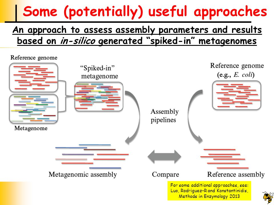 Some (potentially) useful approaches An approach to assess assembly parameters and results based on in-silico generated spiked-in metagenomes For some additional approaches, see: Luo, Rodriguez-R and Konstantinidis, Methods in Enzymology 2013
