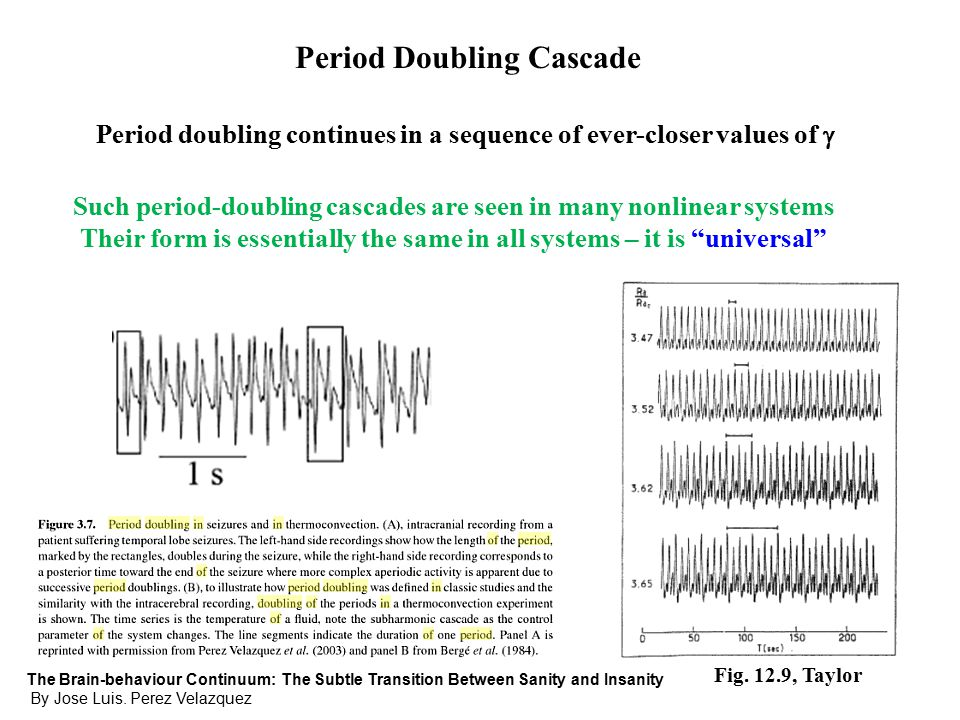 Period Doubling Cascade Period doubling continues in a sequence of ever-closer values of  Such period-doubling cascades are seen in many nonlinear systems Their form is essentially the same in all systems – it is universal The Brain-behaviour Continuum: The Subtle Transition Between Sanity and Insanity By Jose Luis.