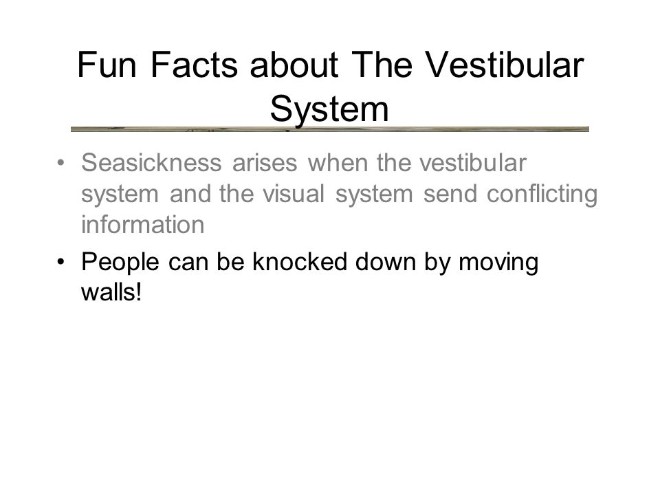 Fun Facts about The Vestibular System Seasickness arises when the vestibular system and the visual system send conflicting information People can be knocked down by moving walls!