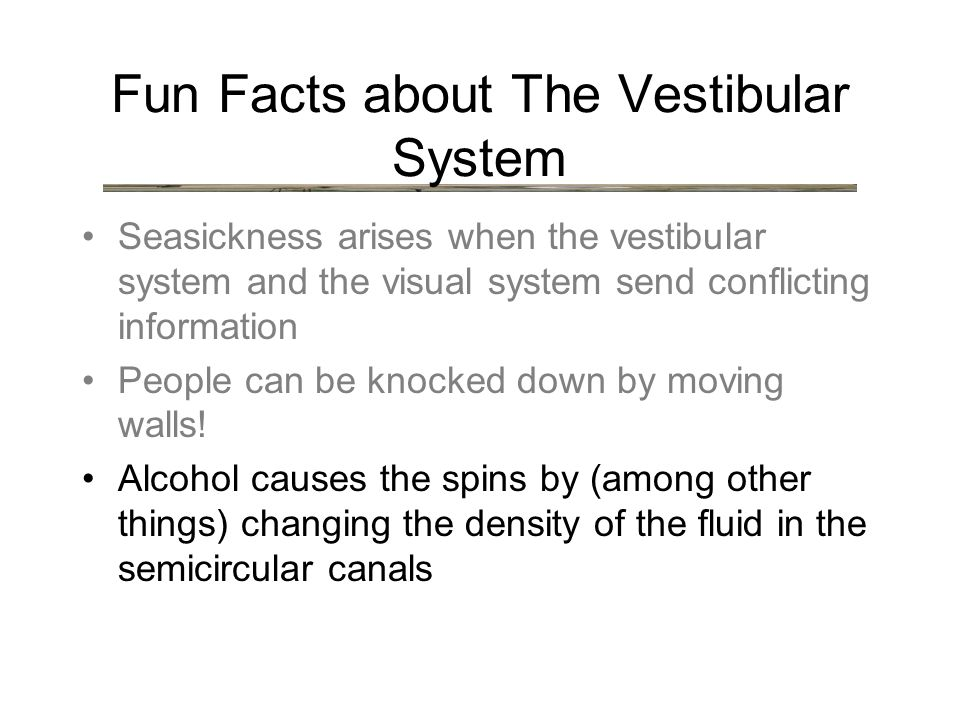 Fun Facts about The Vestibular System Seasickness arises when the vestibular system and the visual system send conflicting information People can be knocked down by moving walls.