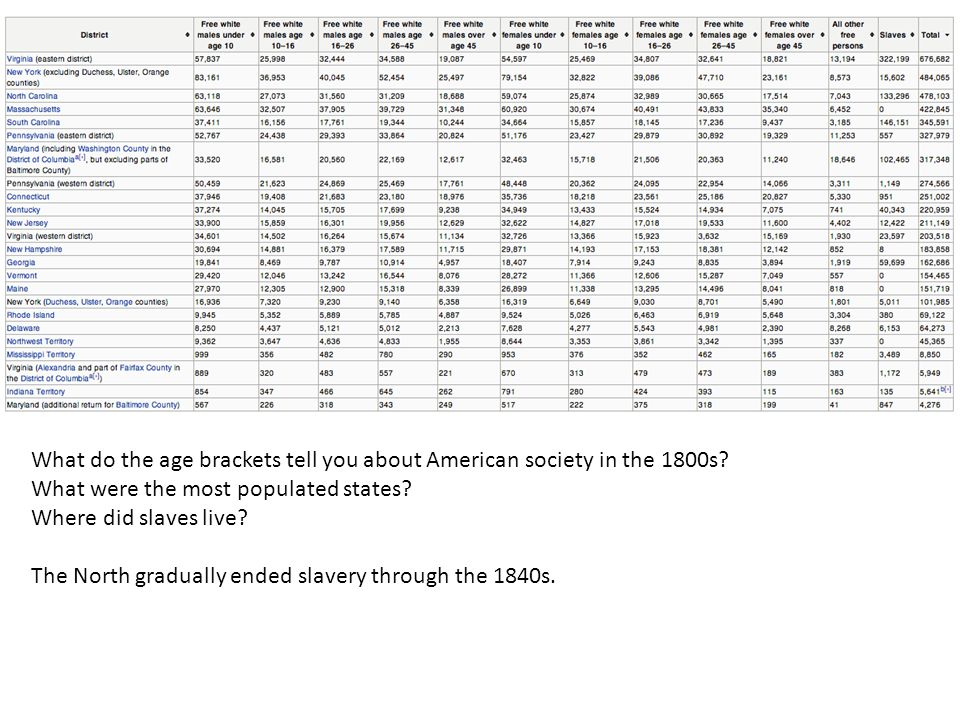 What do the age brackets tell you about American society in the 1800s.