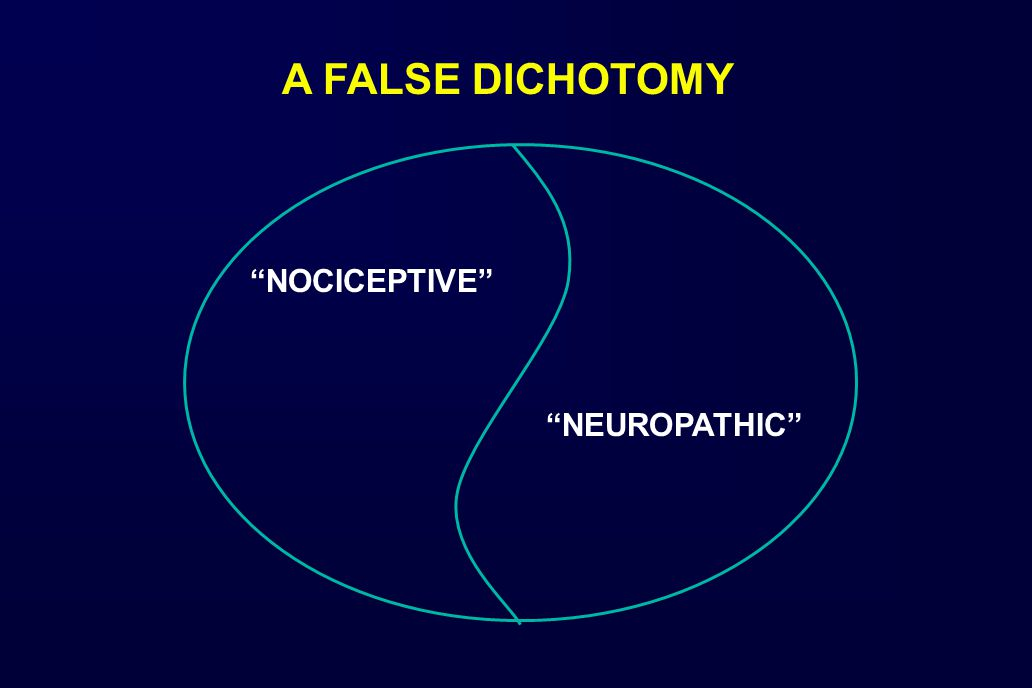 NOCICEPTIVE NEUROPATHIC A FALSE DICHOTOMY