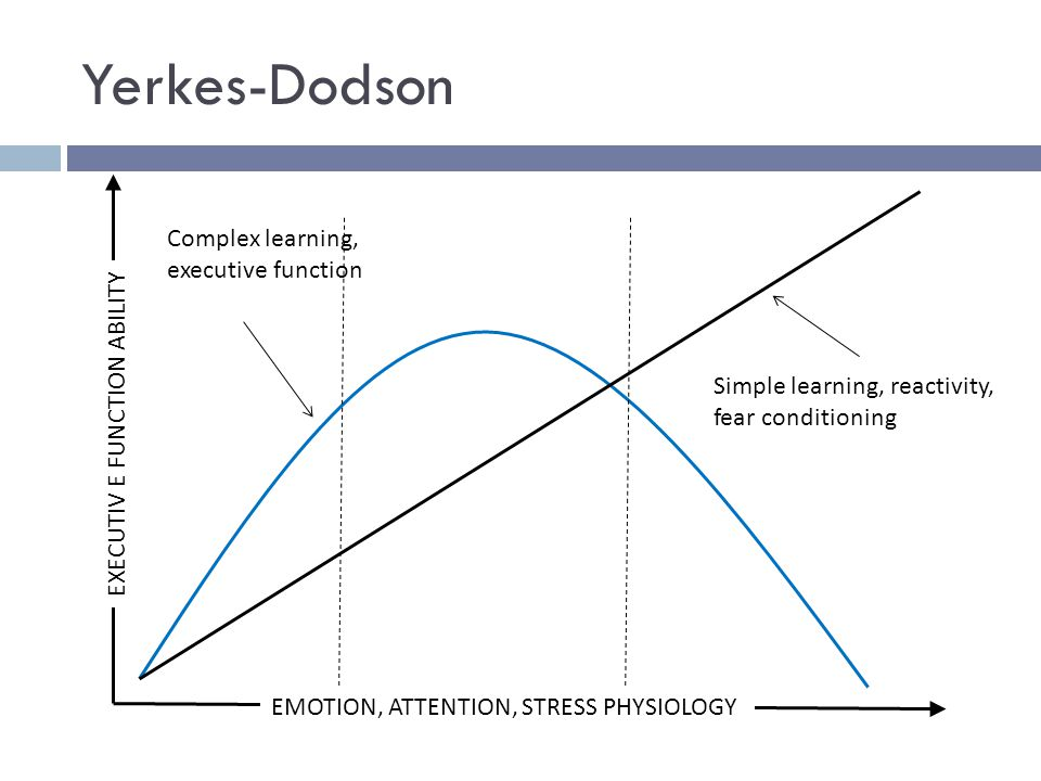 Yerkes-Dodson EMOTION, ATTENTION, STRESS PHYSIOLOGY Complex learning, executive function Simple learning, reactivity, fear conditioning EXECUTIV E FUN
