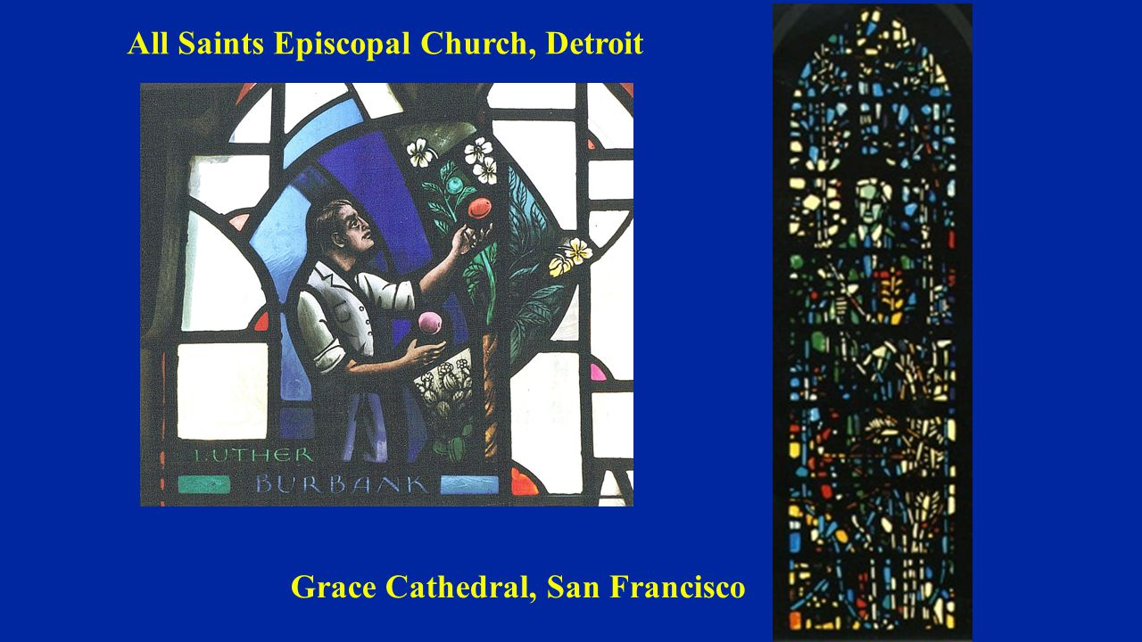 Grace Cathedral, San Francisco All Saints Episcopal Church, Detroit
