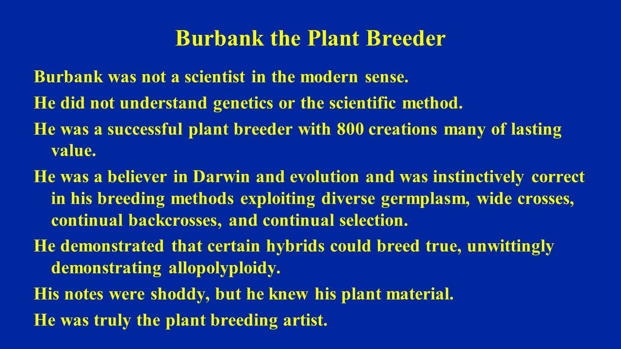 Burbank the Plant Breeder Burbank was not a scientist in the modern sense.