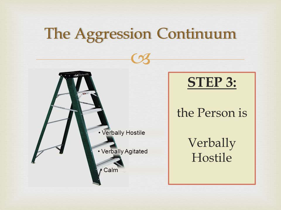  STEP 3: the Person is Verbally Hostile Verbally Agitated Calm