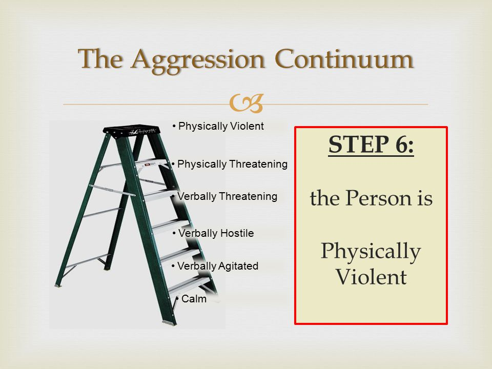  Physically Violent Physically Threatening Verbally Threatening Verbally Hostile Verbally Agitated Calm STEP 6: the Person is Physically Violent
