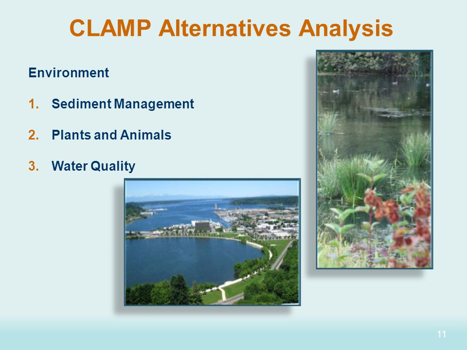 11 Environment 1.Sediment Management 2.Plants and Animals 3.Water Quality CLAMP Alternatives Analysis