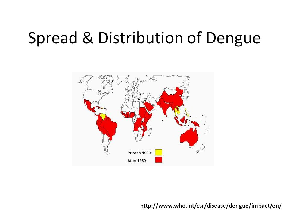 Spread & Distribution of Dengue http://www.who.int/csr/disease/dengue/impact/en/