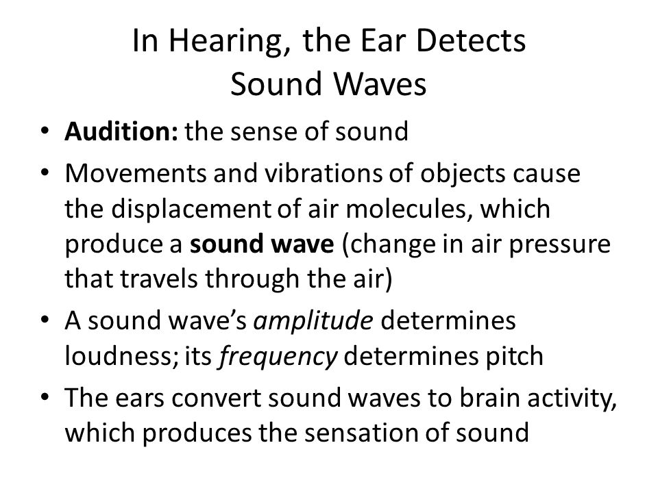 In Hearing, the Ear Detects Sound Waves Audition: the sense of sound Movements and vibrations of objects cause the displacement of air molecules, whic