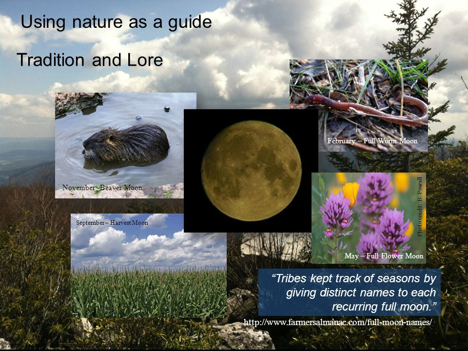 Using nature as a guide Tradition and Lore http://www.farmersalmanac.com/full-moon-names/ Tribes kept track of seasons by giving distinct names to each recurring full moon. November -Beaver Moon February – Full Worm Moon May – Full Flower Moon Photo credit: B.