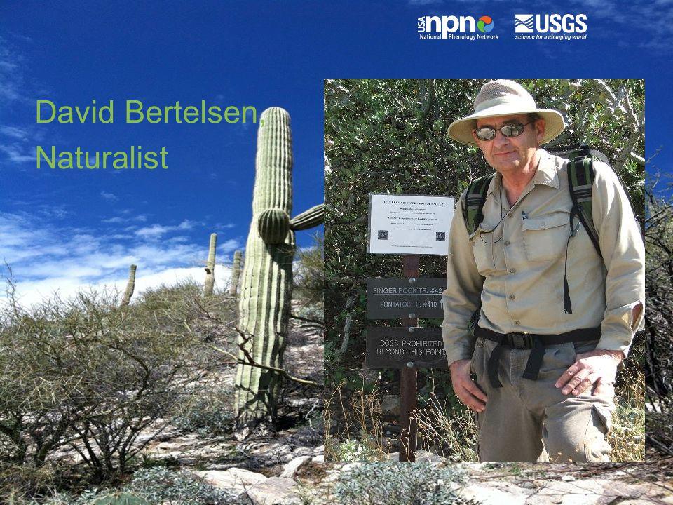 David Bertelsen, Naturalist