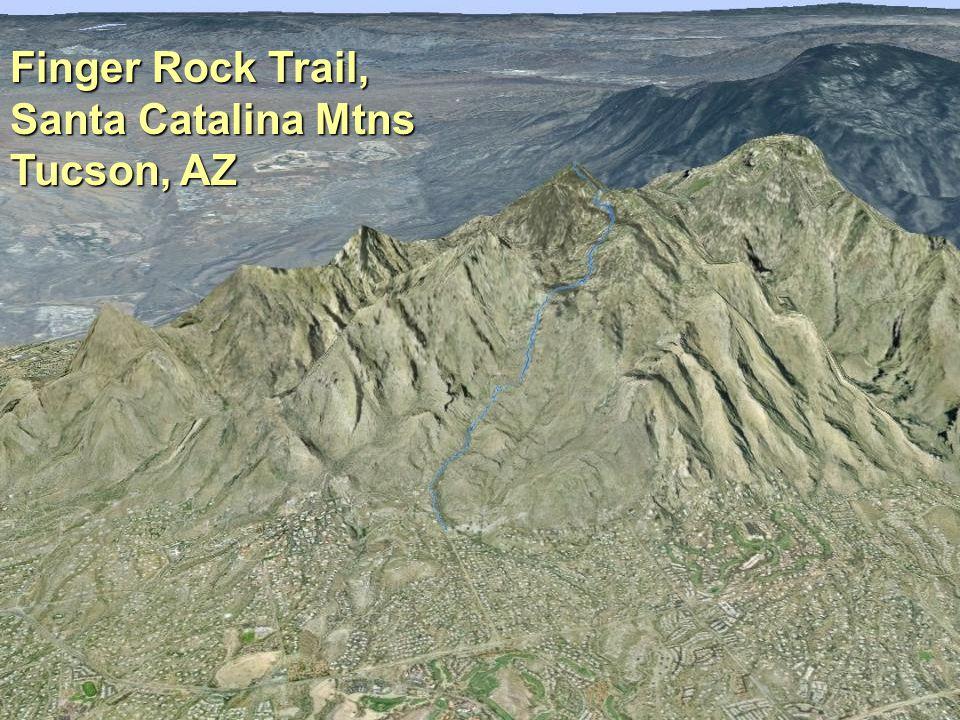 What's Phenology Finger Rock – Santa Catalina Mtns, Tucson Finger Rock Trail, Santa Catalina Mtns Tucson, AZ