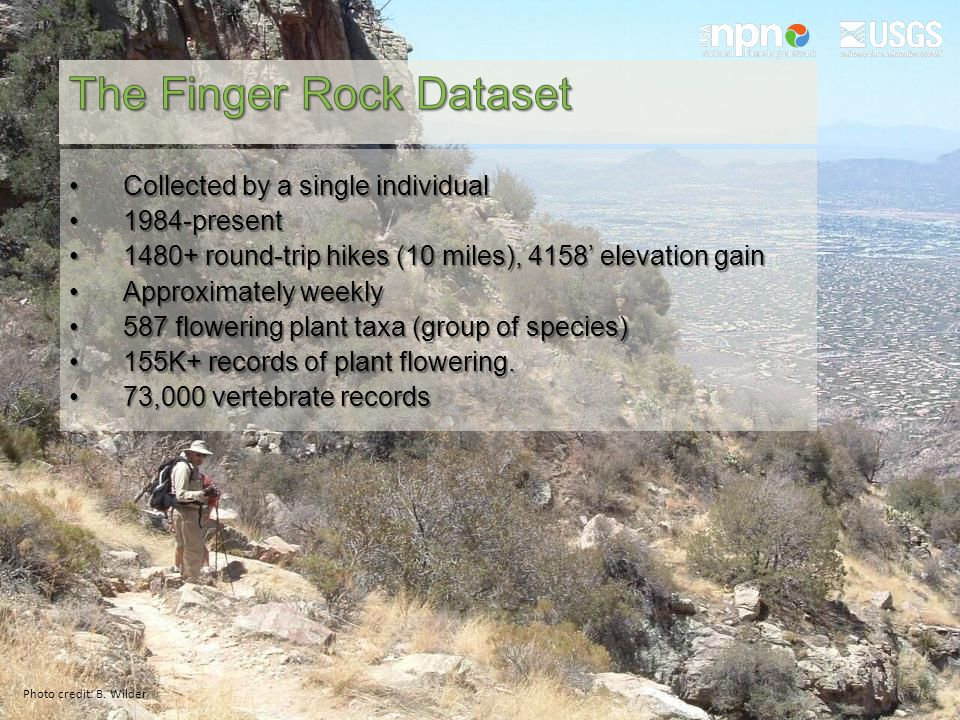Collected by a single individualCollected by a single individual 1984-present1984-present 1480+ round-trip hikes (10 miles), 4158' elevation gain1480+ round-trip hikes (10 miles), 4158' elevation gain Approximately weeklyApproximately weekly 587 flowering plant taxa (group of species)587 flowering plant taxa (group of species) 155K+ records of plant flowering.155K+ records of plant flowering.