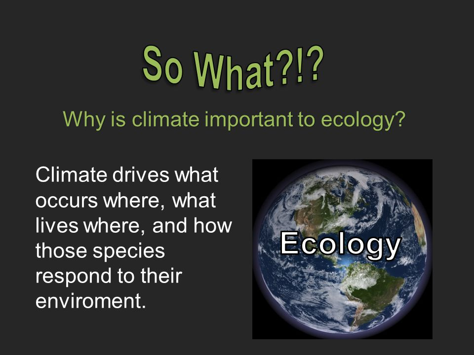 Why is climate important to ecology.