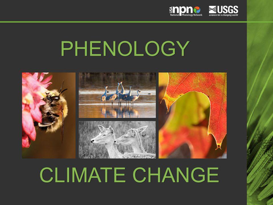 PHENOLOGY CLIMATE CHANGE