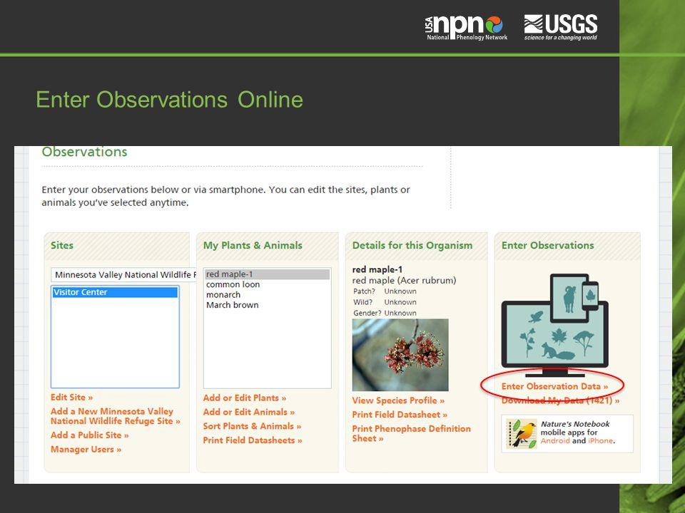 Enter Observations Online