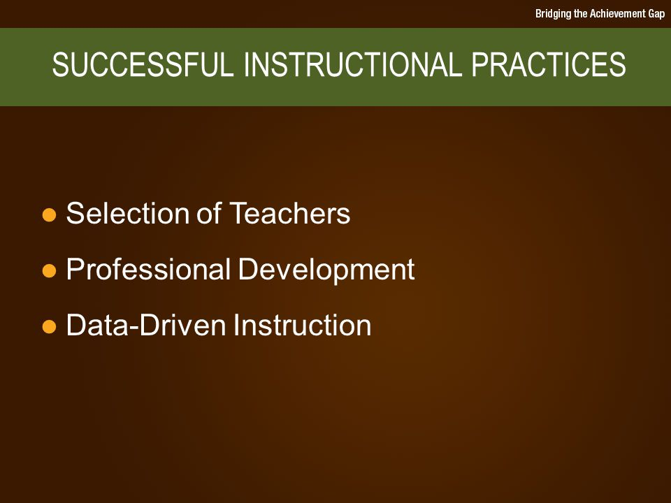 Selection of Teachers Professional Development Data-Driven Instruction SUCCESSFUL INSTRUCTIONAL PRACTICES