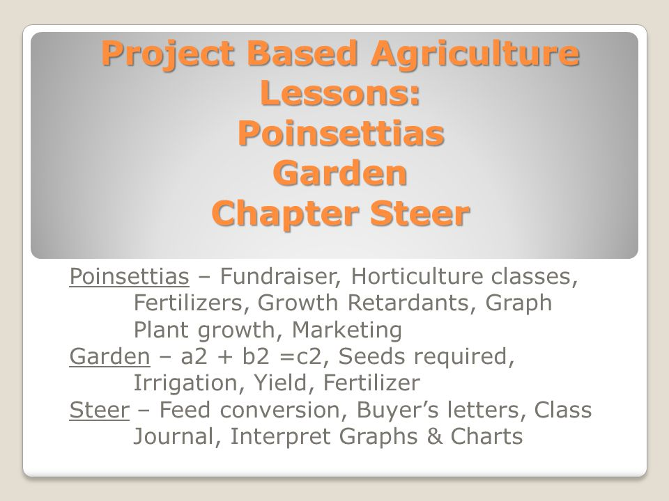 Project Based Agriculture Lessons: Poinsettias Garden Chapter Steer Poinsettias – Fundraiser, Horticulture classes, Fertilizers, Growth Retardants, Gr
