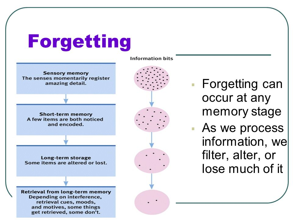 The Forgetting Curve Hermann Ebbinghaus first began to study forgetting using nonsense syllables Nonsense syllables are three letter combinations that