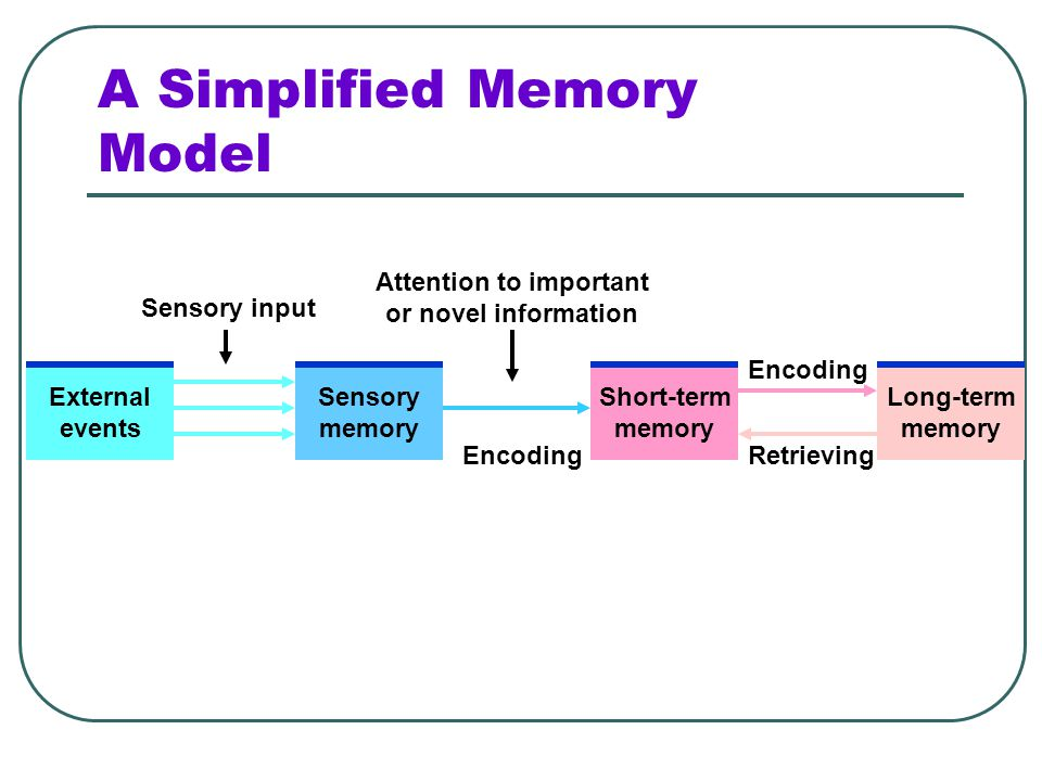 Long-Term Memory Encoding—process that controls movement from working to long-term memory store Retrieval—process that controls flow of information fr