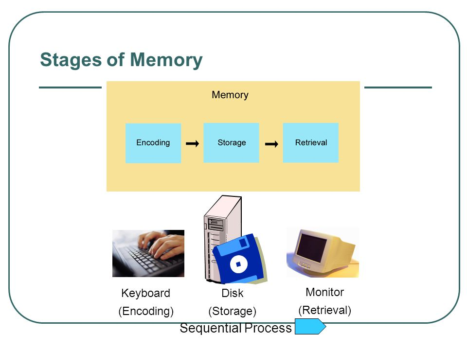 Flashbulb Memory A unique and highly emotional moment may give rise to a clear, strong, and persistent memory called flashbulb memory. However, this m
