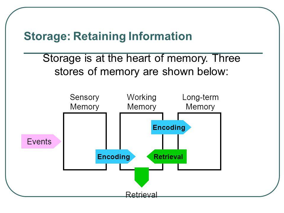 Encoding Summarized in a Hierarchy