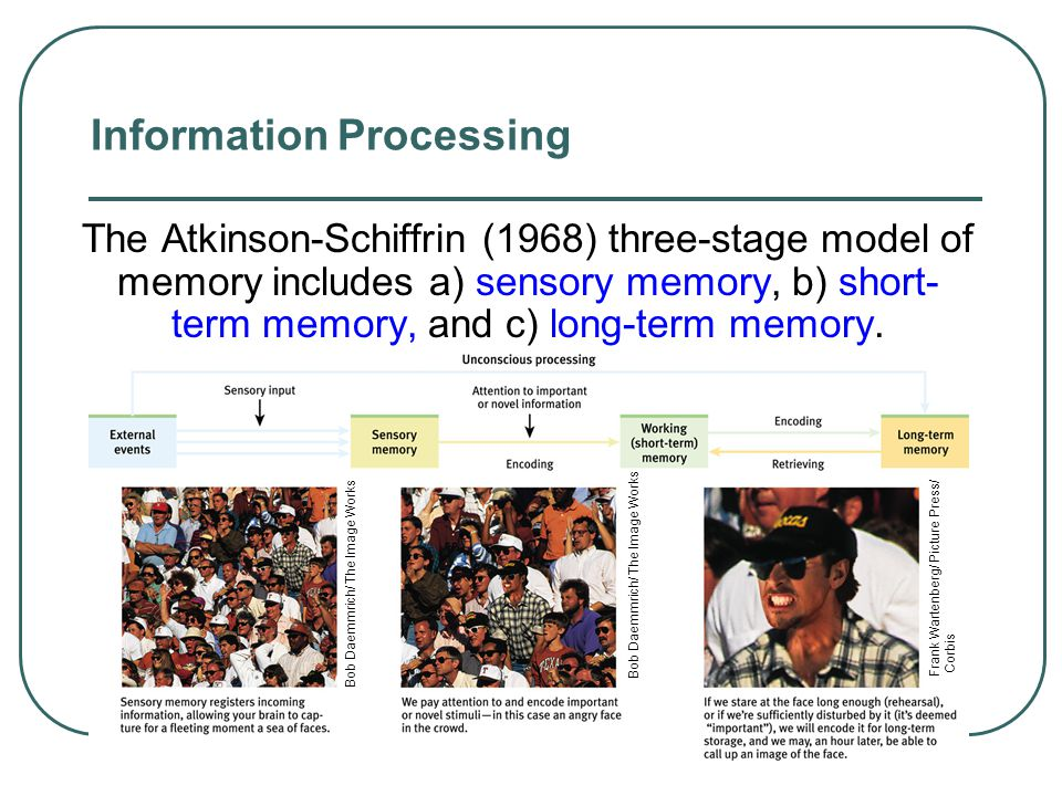 Stages of Memory Keyboard (Encoding) Disk (Storage) Monitor (Retrieval) Sequential Process