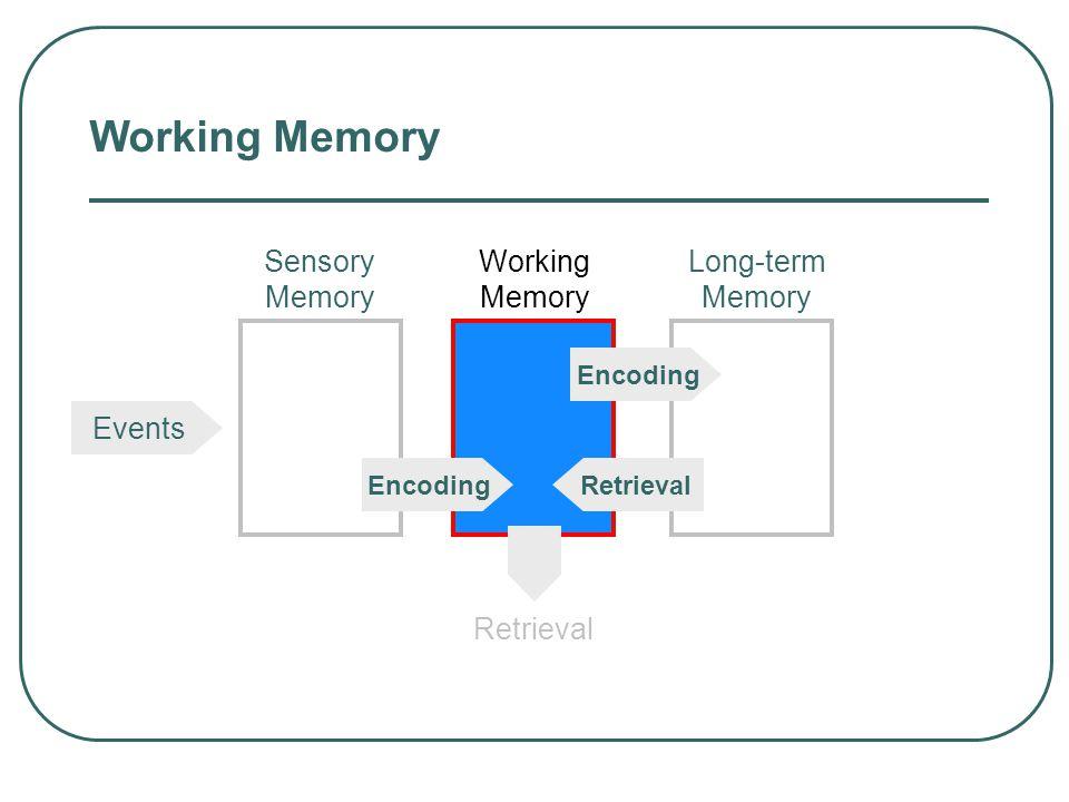 Sensory Memories Iconic 0.5 sec. long Echoic 3-4 sec. long Hepatic < 1 sec. long The duration of sensory memory varies for the different senses.