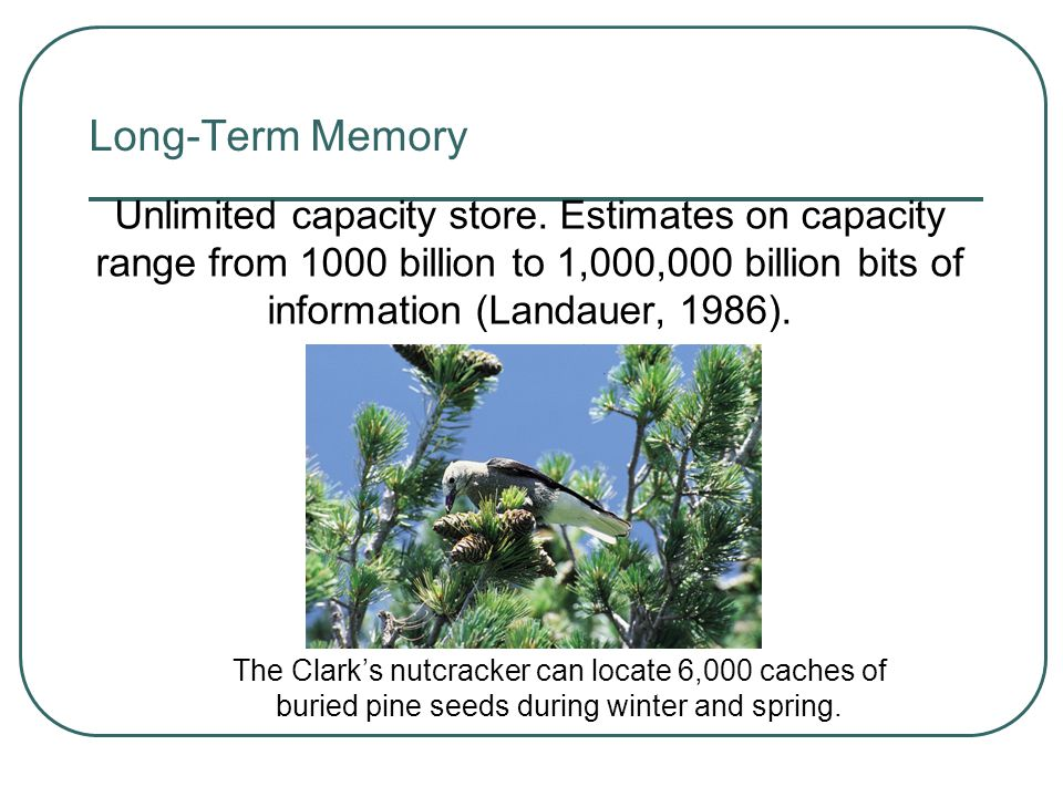 Long-Term Memory Sensory Memory Working Memory Long-term Memory Encoding RetrievalEncoding Events Retrieval