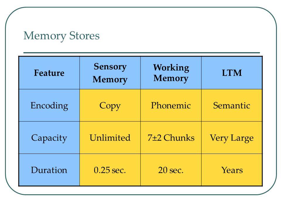 Long-Term Memory Unlimited capacity store. Estimates on capacity range from 1000 billion to 1,000,000 billion bits of information (Landauer, 1986). Th