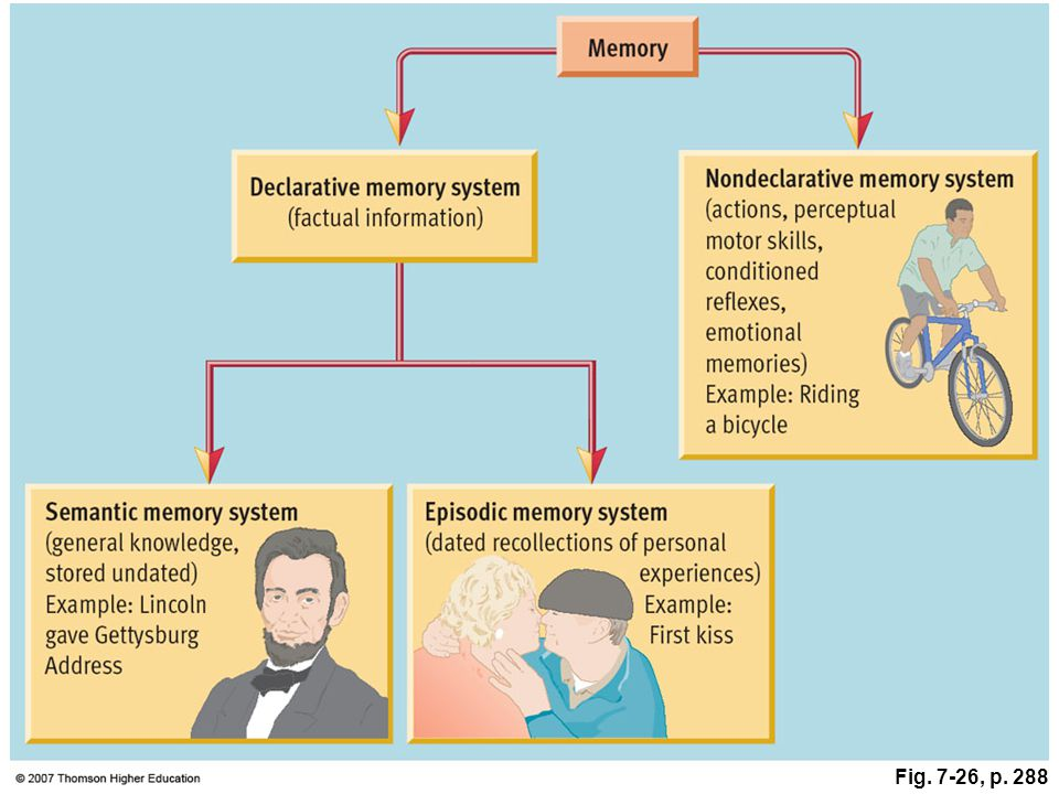 Storing Implicit & Explicit Memories Explicit Memory refers to facts and experiences that one can consciously know and declare. Implicit memory involv