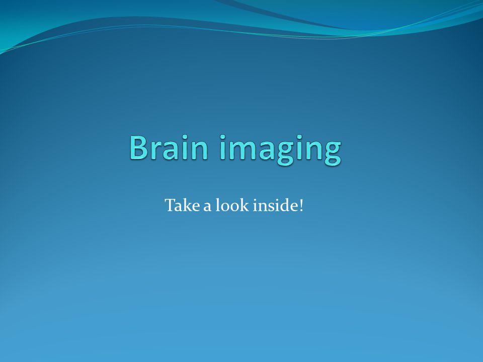 Take a look inside!