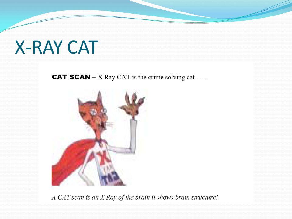 X-RAY CAT